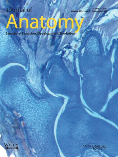 Cover of Journal of Anatomy