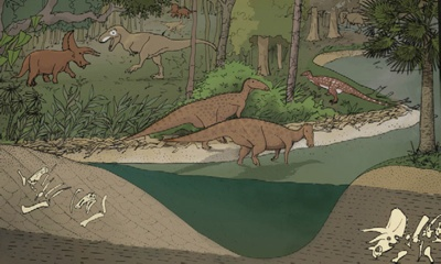 Illustration of dinosaurs in a landscape